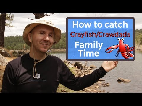 How to Catch Crayfish Crawdads | Family Fun Vlog Episode 12