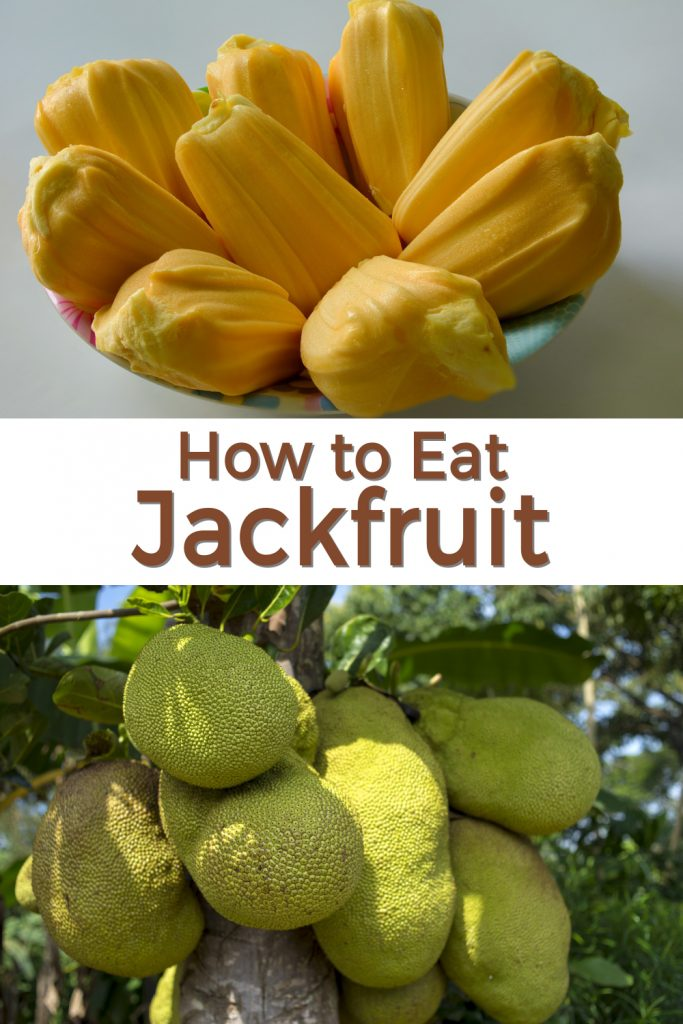How to eat jackfruit pin for Pinterest.