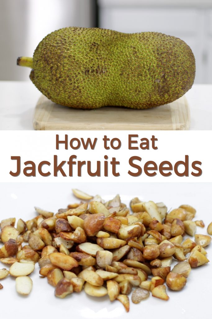 How to eat Jackfruit Seeds pin for Pinterest