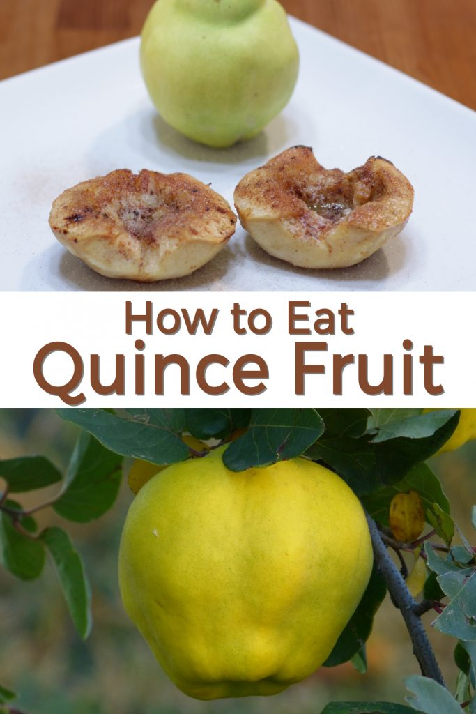 How to eat quince fruit pin for Pinterest