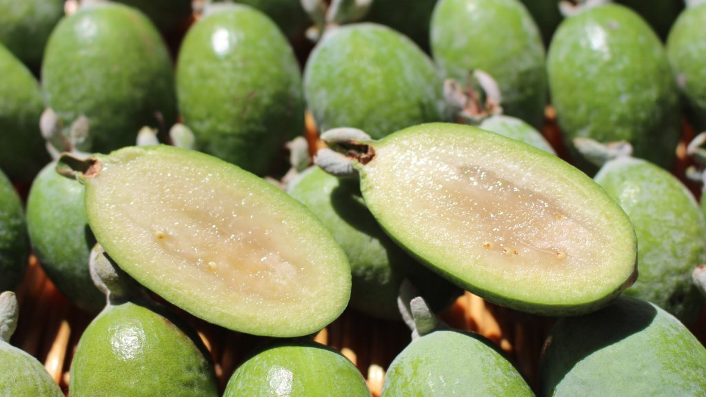 Pineapple guavas feijoas in a pile.