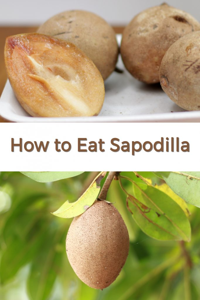 How to eat sapodilla pin for Pinterest